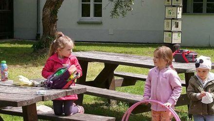 Iskierki w ojcowskim parku
